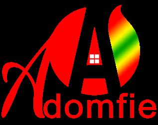 AdomFie.com – Adom Nkoaa!